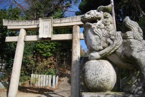 鳥居と狛犬